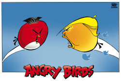 ANGRY BIRDS WITH NUKES,  by Randy Bish