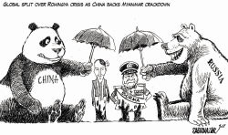 China backs Myanmar crackdown on Rohingyas by Sabir Nazar