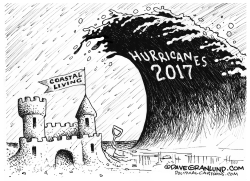 Hurricanes 2017 by Dave Granlund