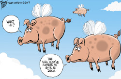 When Pigs Fly by Bruce Plante