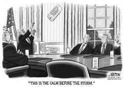 Trump Dispenses Paper Towels at Cabinet Meeting by RJ Matson