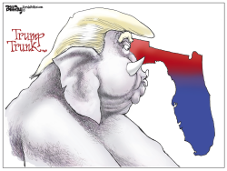 Florida Trump Trunk by Bill Day