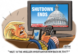 Trump Worries As Government Shutdown Ends by RJ Matson