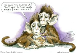 Monkey clones by Taylor Jones