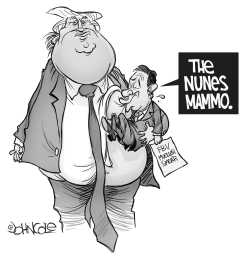 The Nunes Mammo BW by John Cole
