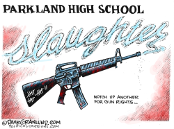 Florida school shooting  by Dave Granlund