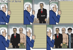Syria windowshade by Steve Greenberg