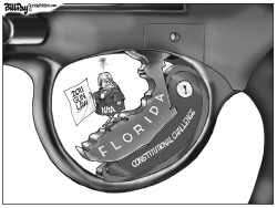 Florida Gun Law by Bill Day