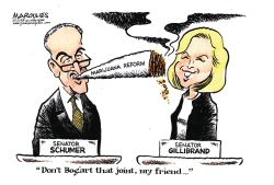 Schumer and Gillibrand marijuana plans color by Jimmy Margulies