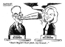 Schumer and Gillibrand marijuana plans by Jimmy Margulies