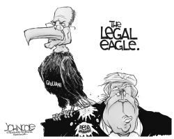 The legal eagle by John Cole