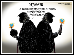 Trump Spygate by J.D. Crowe