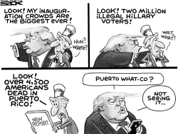 Puerto Rico Deaths by Steve Sack