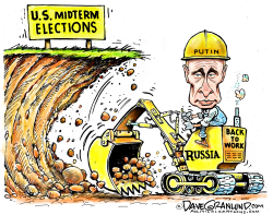 Putin and US midterms by Dave Granlund