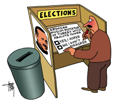 Turkish Elections by Arend Van Dam