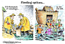 Floods by Dave Granlund