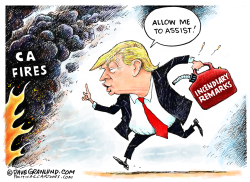 CA fires and Trump remarks by Dave Granlund