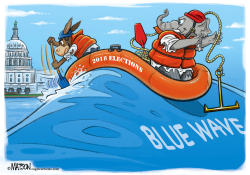 Catching A Blue Wave Election by RJ Matson