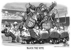 Republicans Try To Block The Vote by RJ Matson