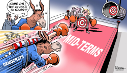 Democrats in mid-terms by Paresh Nath