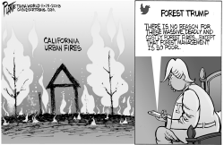 Trump and California Fires by Bruce Plante