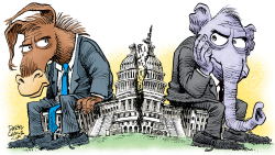 Split Capitol by Daryl Cagle