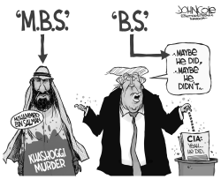 MBS and BS by John Cole