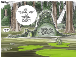 DeSantis the Swampman FLORIDA by Bill Day