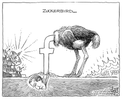 Facebook accountability by Adam Zyglis