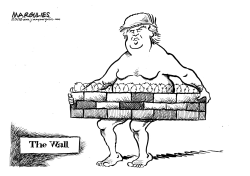 Trump Wall by Jimmy Margulies
