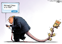 The Big Rat by Nate Beeler