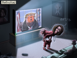Trump Pelosi by Sean Delonas