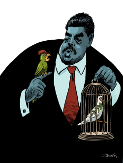 Maduro´s reelection by Dario Castillejos