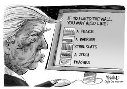 You Liked the Wall You May Also Like by Dave Whamond