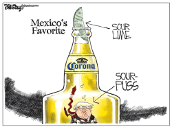 Mexico's Favorite by Bill Day