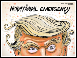 Trump's Irrational Emergency by J.D. Crowe