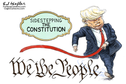 Sidestepping The Constitution by Ed Wexler