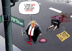 National Emergency by Nate Beeler