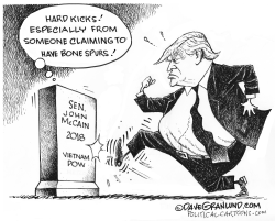 Trump at McCain grave by Dave Granlund