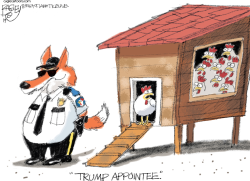 Guarding the Hen House by Pat Bagley