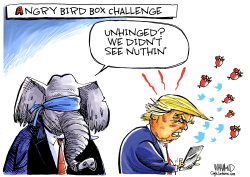 GOP bird box response to Trump's rage tweets by Dave Whamond