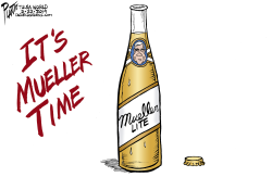 The Mueller Report by Bruce Plante