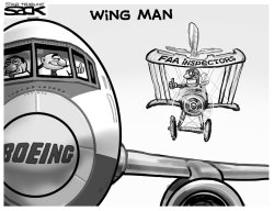 FAA Wingman by Steve Sack