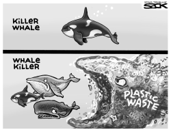 Whales vs Plastic by Steve Sack