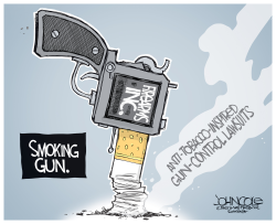 Gun control lawsuits by John Cole
