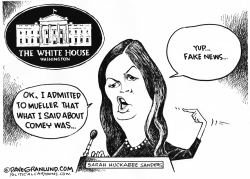 Sarah H Sanders and Mueller Report by Dave Granlund