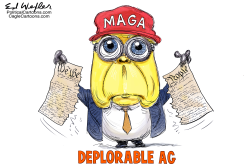 Deplorable AG by Ed Wexler