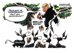 Mueller Report and Congress by Jimmy Margulies