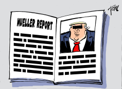 Mueller report censored by Tom Janssen