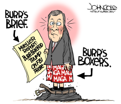 LOCAL NC Burr and Mueller Report by John Cole